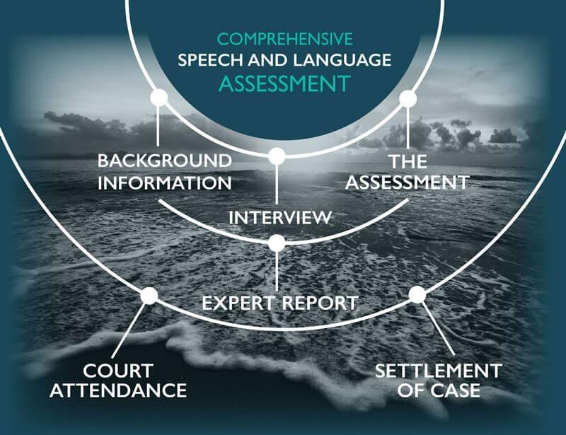 Comprehensive Speech and Language Assessment chart